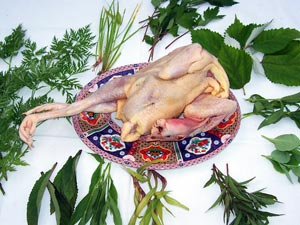a plucked chicken on a platter surrounded by green herbs